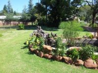Garden with Guinea Fowls